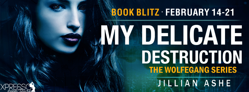 my-delicate-destruction-blitz-banner