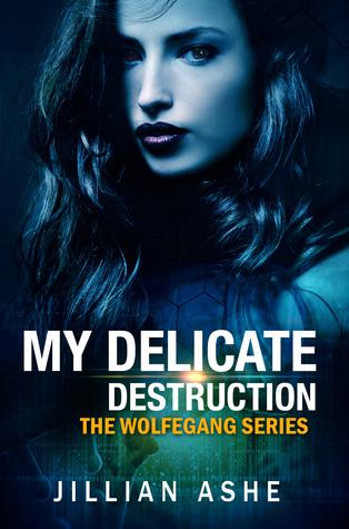 #BookBlitz: My Delicate Destruction by Jillian Ashe @JillianAshe @XpressoTours#Excerpt