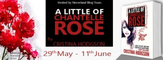 A Little of Chantelle Rose - Tour Banner