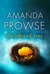the-idea-of-you-amanda-prowse