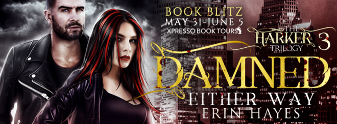 Damned Either Way - Blitz Banner