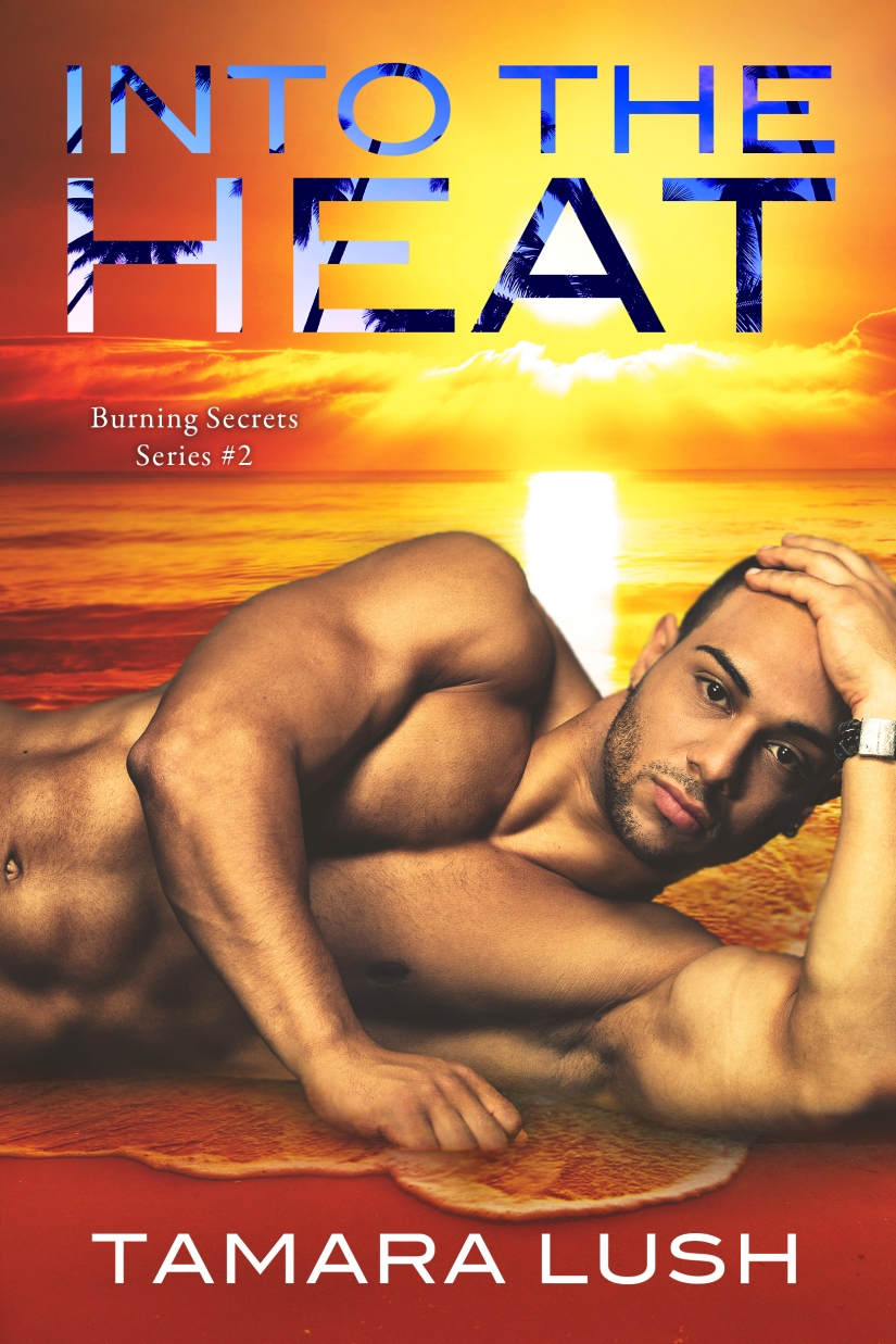 #BlogTour: Into the Heat by Tamara Lush @tamaralush @InkSlingerPR #Excerpt
