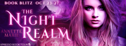 The Night Realm - Blitz Banner