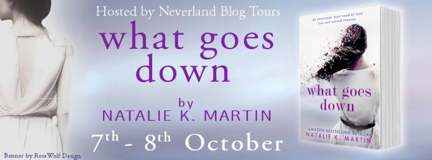 What Goes Down - Tour Banner