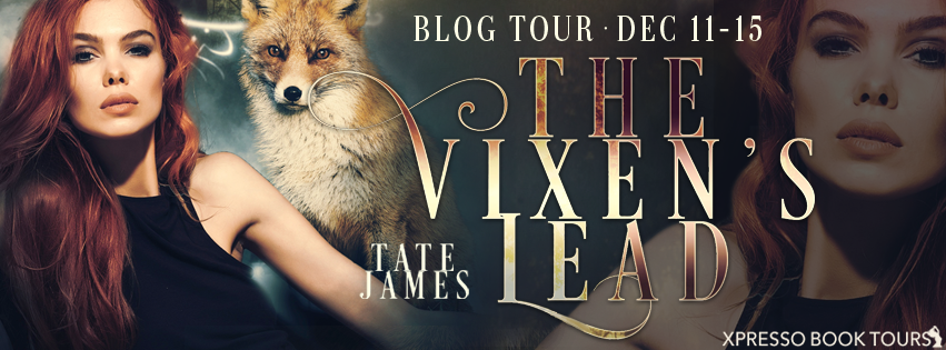 The Vixen's Lead - Tour Banner