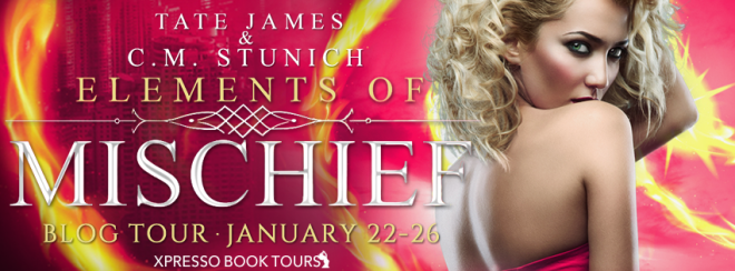 Elements of Mischief - Tour Banner